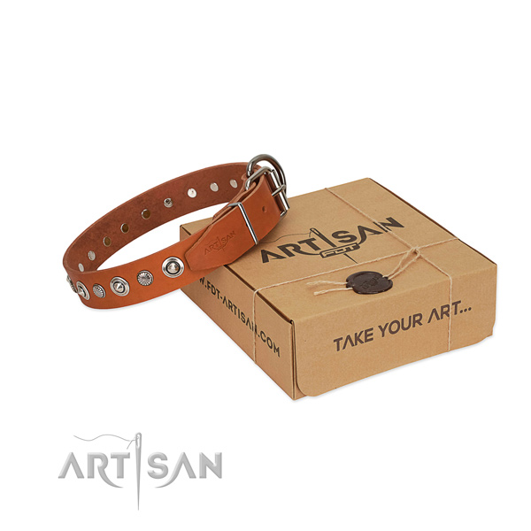 Reliable full grain genuine leather dog collar with awesome decorations