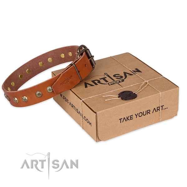 Strong D-ring on genuine leather collar for your attractive canine