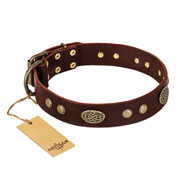 """Old-fashioned Glamor"" FDT Artisan Brown Leather Labrador Collar with Old Bronze Look Plates and Circles"