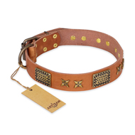 """Cosmic Traveller"" FDT Artisan Adorned Leather Labrador Collar with Old Bronze-Plated Stars and Plates"
