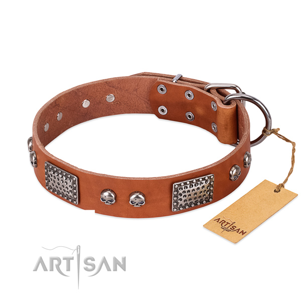 Easy to adjust full grain natural leather dog collar for stylish walking your dog