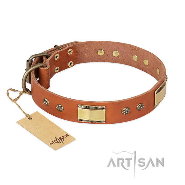 Unique full grain natural leather collar for your dog