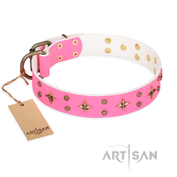 Fancy walking dog collar of top notch genuine leather with adornments