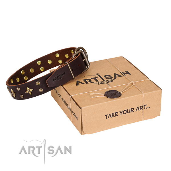 Daily use dog collar of reliable genuine leather with studs