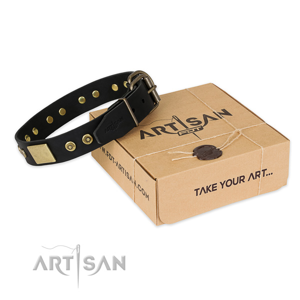 Rust-proof buckle on leather dog collar for comfortable wearing