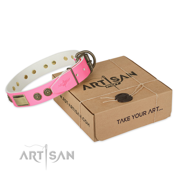 Durable decorations on dog collar for everyday walking