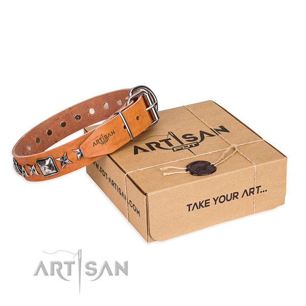 Fancy walking dog collar of high quality natural leather with adornments