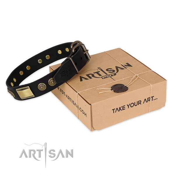 Durable hardware on full grain natural leather dog collar for stylish walking