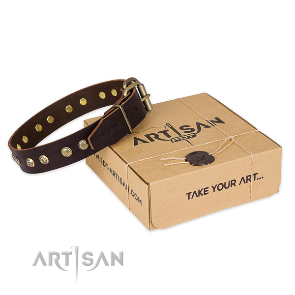 Reliable fittings on genuine leather collar for your handsome doggie