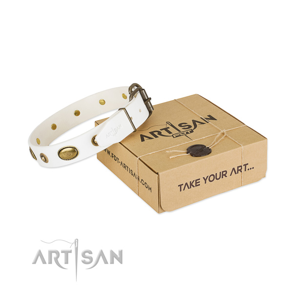 Adorned full grain natural leather collar for your impressive doggie