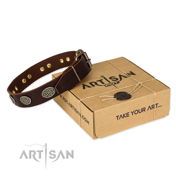 Durable D-ring on full grain natural leather collar for your attractive canine