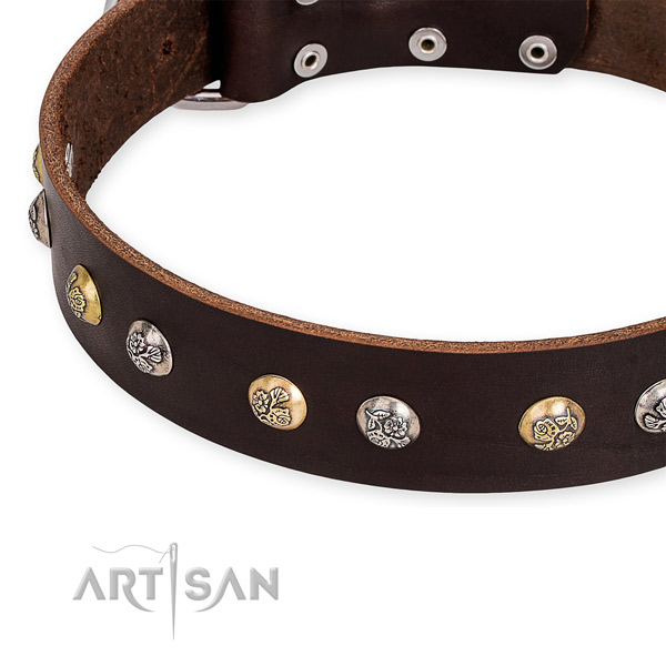 Leather dog collar with exquisite durable adornments