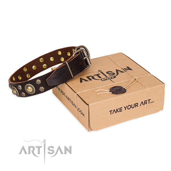 Handy use dog collar of top notch full grain leather with decorations