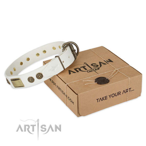 Corrosion proof D-ring on leather dog collar for daily use