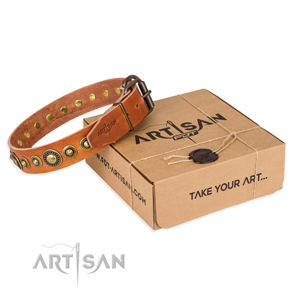 Best quality leather dog collar handcrafted for everyday use