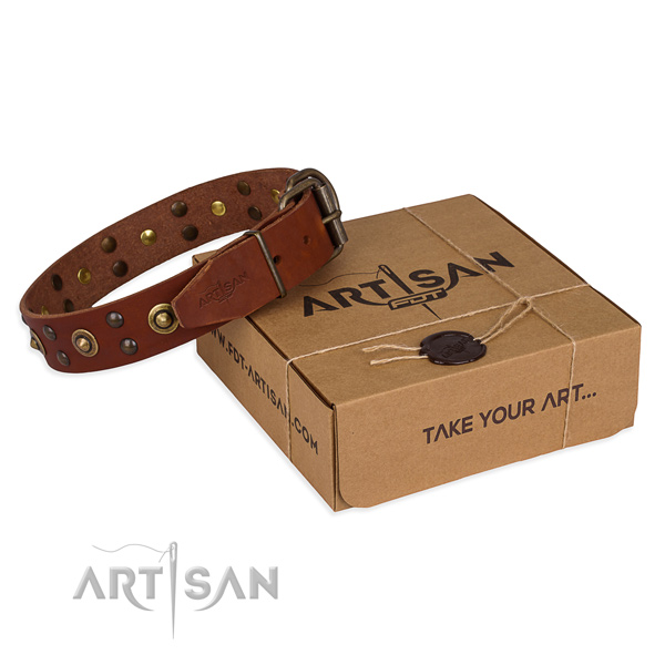 Reliable traditional buckle on full grain genuine leather collar for your handsome dog