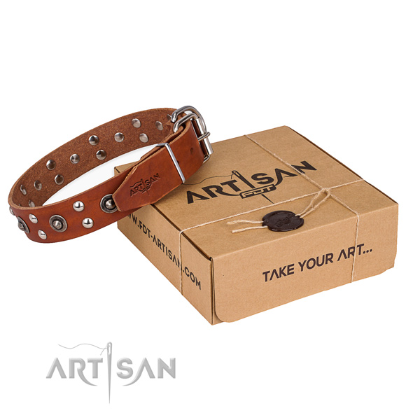 Corrosion resistant fittings on full grain leather collar for your stylish dog