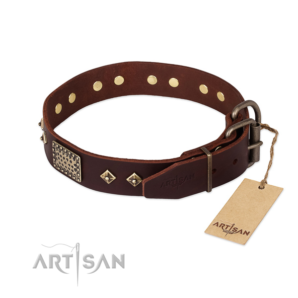 Genuine leather dog collar with rust-proof hardware and studs