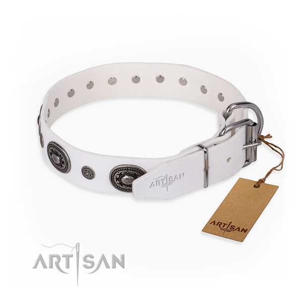 Top notch full grain leather dog collar made for everyday walking