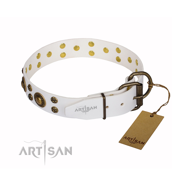 Everyday walking decorated dog collar of quality leather