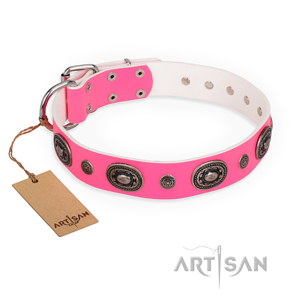 Durable leather dog collar handmade for walking