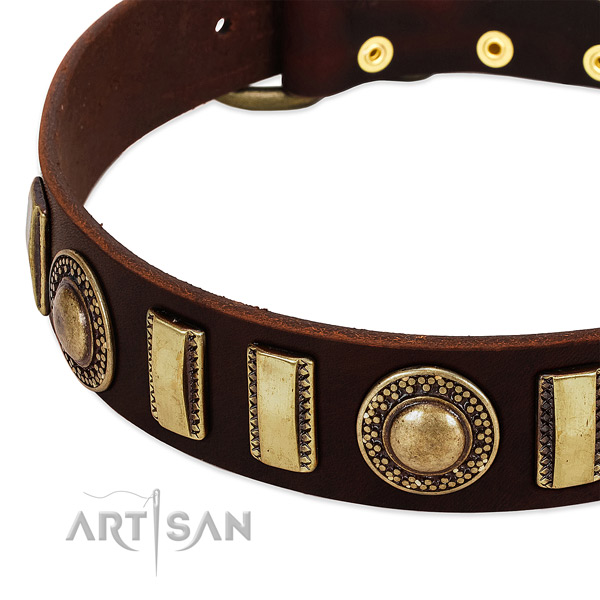 High quality natural leather dog collar with durable fittings