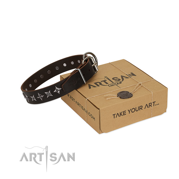 Walking dog collar of durable full grain natural leather with adornments