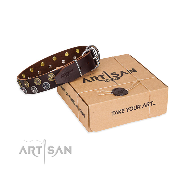 Fancy walking dog collar of finest quality genuine leather with decorations
