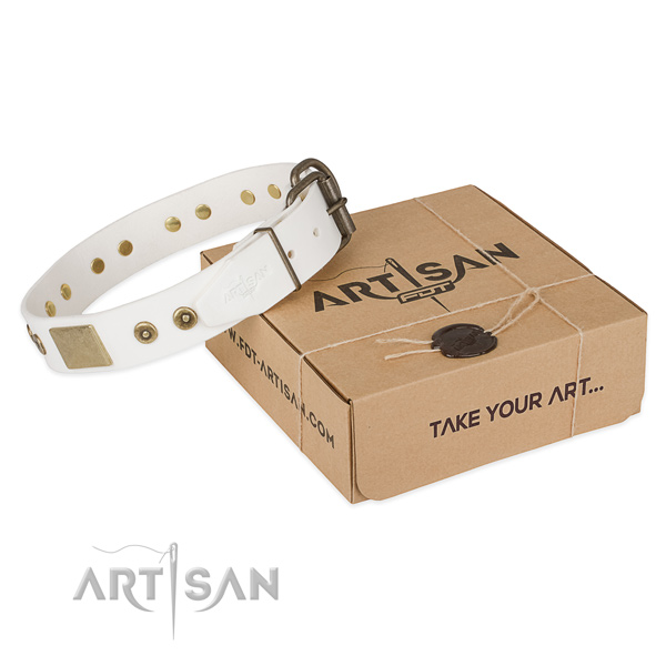 Stylish design natural leather collar for your lovely canine