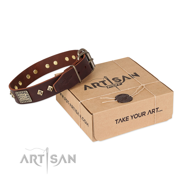 Remarkable leather collar for your handsome doggie