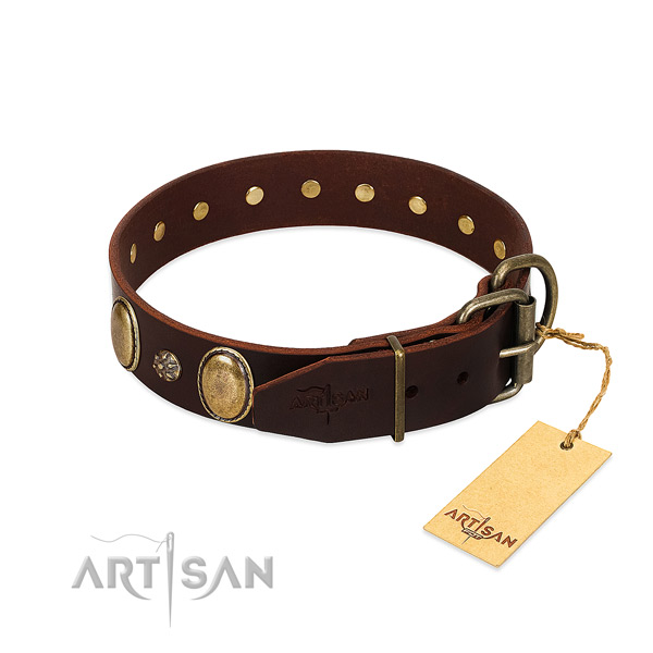 Everyday use quality genuine leather dog collar
