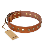 """Spring Flavor"" FDT Artisan Adorned Leather Labrador Collar with Old Bronze-Plated Engraved Studs"