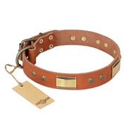 """Enchanting Spectacle"" FDT Artisan Tan Leather Labrador Collar with Old Bronze Look Plates and Round Studs"