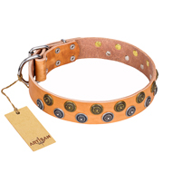 """Precious Sparkle"" FDT Artisan Handcrafted Tan Leather Labrador Collar"