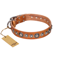 """Daily Chic"" FDT Artisan Tan Leather Labrador Collar with Decorations"