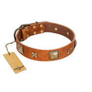 """Celtic Tunes"" FDT Artisan Tan Leather Labrador Collar Adorned with Stars and Squares"