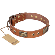 """Catchy Look"" FDT Artisan Decorated Tan Leather Labrador Collar"