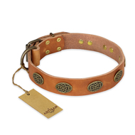 """Magic Amulet"" FDT Artisan Tan Leather Labrador Collar with Oval Studs"