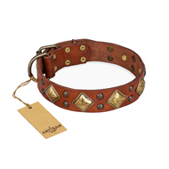 """Flight of Fancy"" FDT Artisan Adorned Leather Labrador Collar"