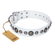 """Ice Age"" FDT Artisan White Studded Leather Labrador Collar"