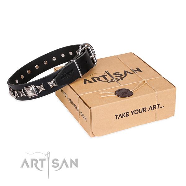 Daily use dog collar of best quality full grain genuine leather with studs