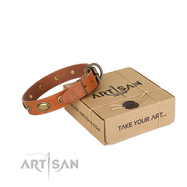 Rust-proof decorations on full grain leather dog collar for your dog