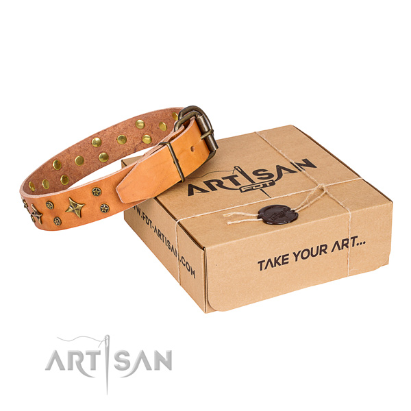 Basic training dog collar of best quality leather with adornments