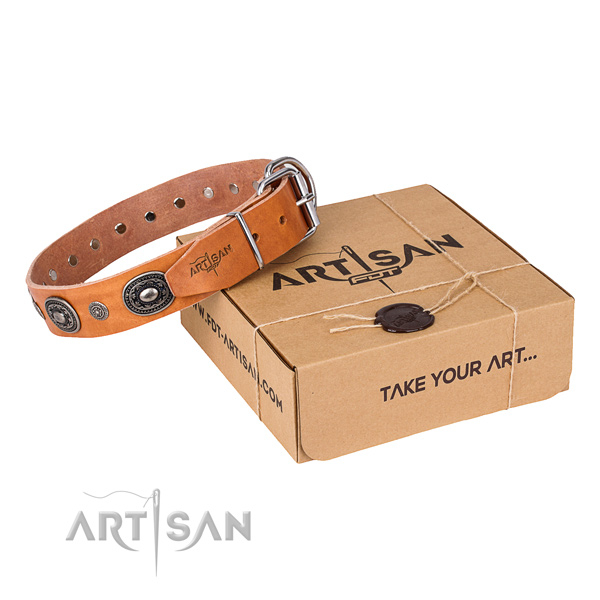 Soft leather dog collar made for daily walking