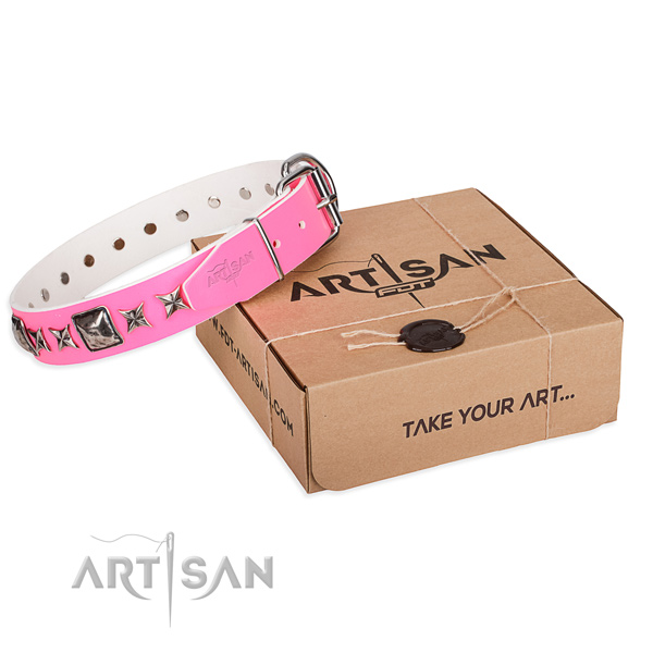 Daily use leather dog collar with embellishments