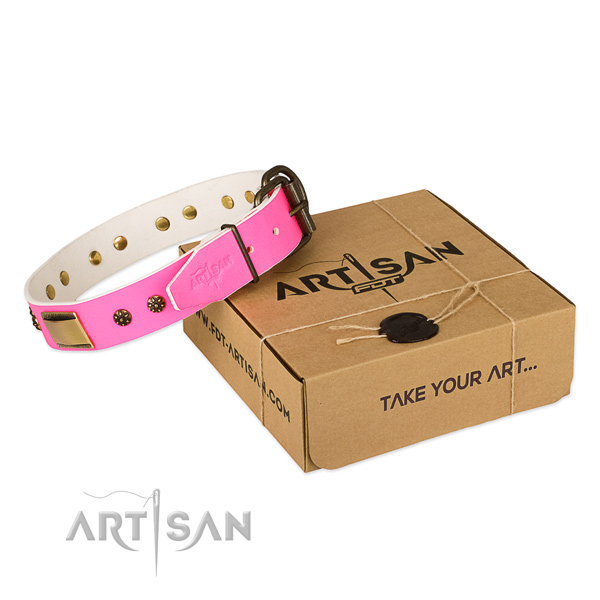 Trendy full grain leather collar for your lovely doggie