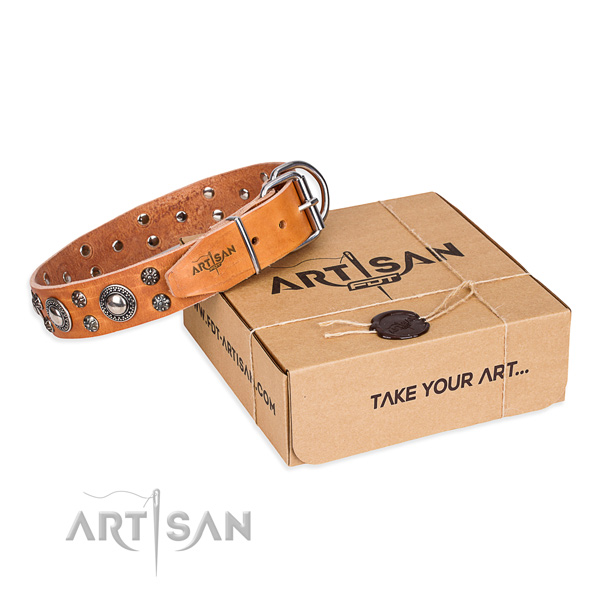 Basic training dog collar of strong full grain natural leather with embellishments