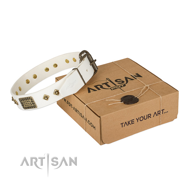 Significant full grain natural leather collar for your stylish pet