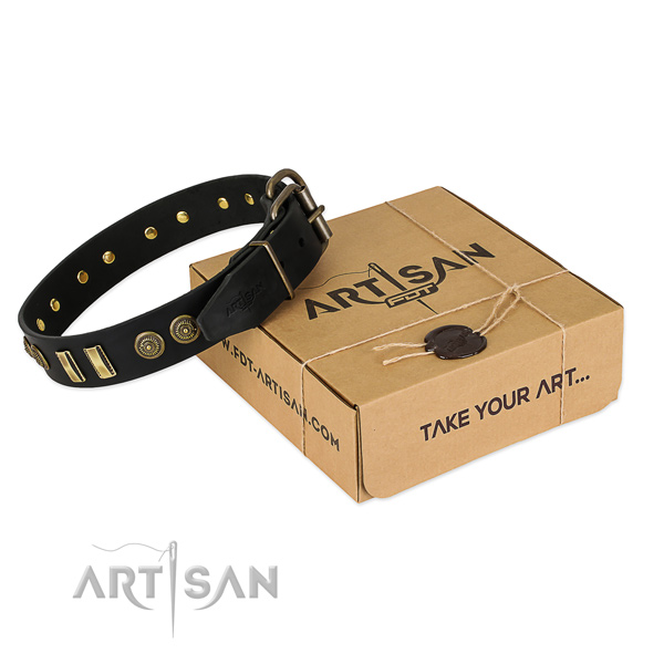 Corrosion proof adornments on natural leather dog collar for your pet