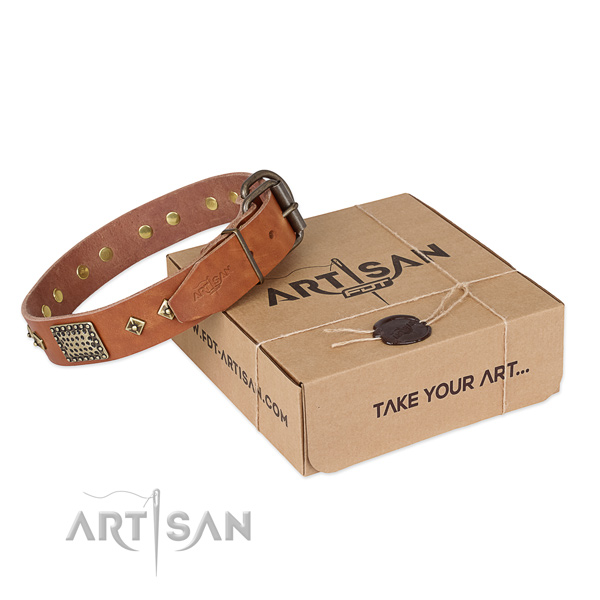 Designer natural leather collar for your lovely doggie